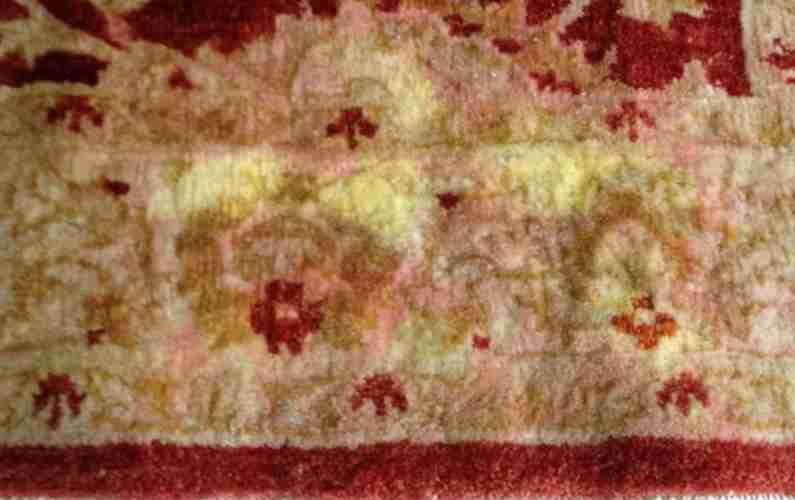 East Bay Oriental Rug Cleaning Dye Bleed